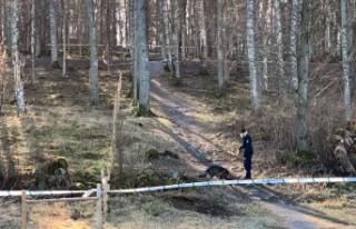 İsveç'te açık alanda bir ceset bulundu -...