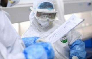 Dünya Sağlık Örgütü: Koronavirüs salgın değil...