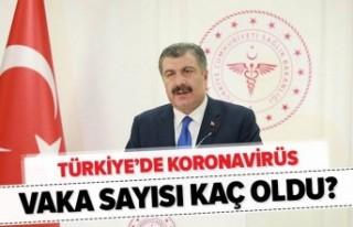 Türkiye'deki yeni vakalar ve can kayıpları...