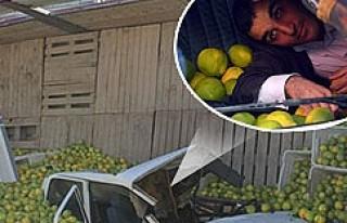 Adana'da portakal yüklü kamyon aracın üzerine...