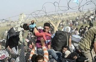 Avrupa'ya ulaşan sığınmacı sayısı yarım...