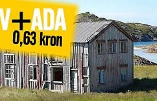 Bu ev artı ada sadece 0.63 krona satılıyor!