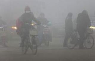 Dünyada çevre kirliliğinden en az ölenlerin olduğu...