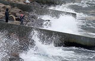 Fırtına İsveç'i vurdu, binlerce ev elektriksiz...