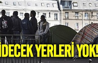 Fransa'da göçmen kampı dağıtıldı