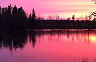 İsveç'te Doğanın Renk Cümbüşü Görenleri...