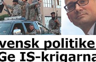 İsveçli politikacı:IŞİD militanlarına iş ve...