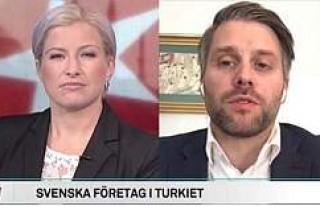 ''İsveçli Şirketlerin Türkiye'de...
