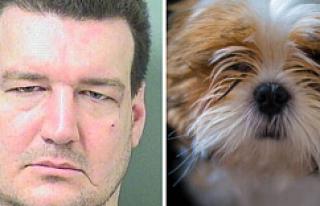 Köpeği ısıran adama hapis cezası!