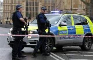 Londra'da bir İsveçli öldürüldü