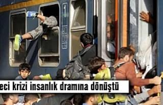 Mülteci krizi insanlık dramına dönüştü