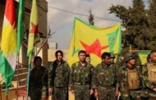 """Norveçli gazeteci Akerhaug: """"YPG etnik temizlik..."""