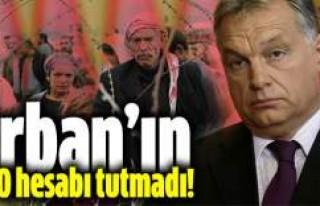 Orban'ın o hesabı tutmadı