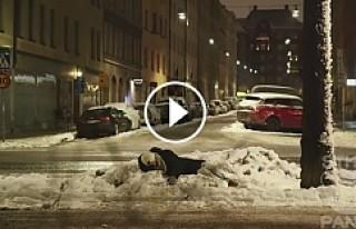 Stockholm'de İnsanlık Ölmüş!