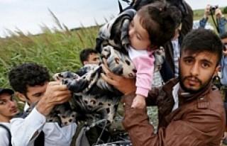 Suriyeliler, 'Hollanda ve İsveç'e gitmek...