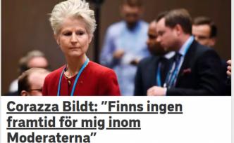 İsveç'te Türk dostu siyasetçi partisini bırakıyor