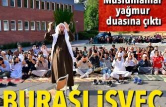 Orman yangınlarıyla mücadele eden İsveç'te Müslümanlardan yağmur duası