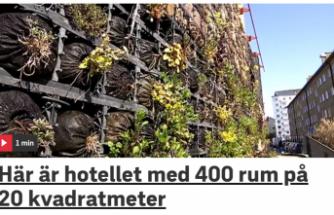 Böcekler için İsveç'te 400 odalı otel açıldı