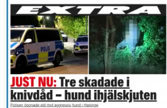 Handen'de üç kişi bıçaklandı