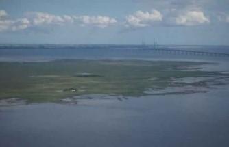 Danimarkalı dalgıcın İsveç'teki dalışı hayatına mal oldu