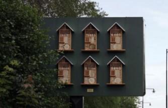 İsveç'te Arı oteline dönüştürülen billboard'lar