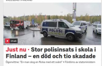 Finlandiya'da kılıçla okul baskını bir kişi öldü
