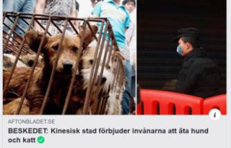 Çin'den koronavirüs kararı: Köpek ve kedi eti yemek yasaklandı