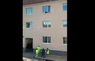 İsveç'te binadan düşen köpeği kahraman işçiler kurtardı