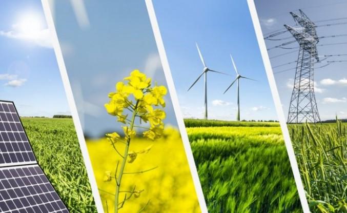 Yenilenebilir Enerjide En İyi Gelişimi Türkiye ve Fas Gösterdi