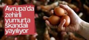 Avrupa'da böcek ilaçlı yumurta sıkandalı yayılıyor
