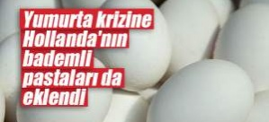 Böcek ilaçlı yumurta krizine Hollanda'nın bademli pastaları da eklendi