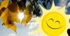 İsveç#039;te rekor sıcaklık