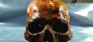 İsveç'te taş devrine ışık tutacak mezar bulundu