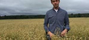 """""""Wow, hiç inek yok"""": İsveçli çiftçi süt üretmek için yulaf kullanıyor!"""